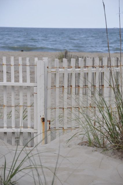 the snow fence at an old beach cottage for rent by Tybee Cottages -  The Magic Of An Old Beach House