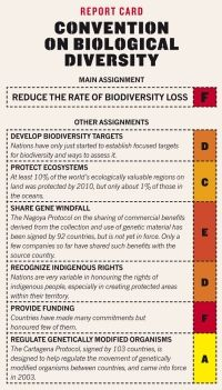 Earth summit: Rio report card via @Nature Publishing Group