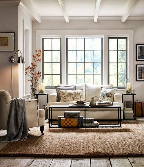 Living Room decor ideas - Transitional style, neutral color palette, metal and natural materials.