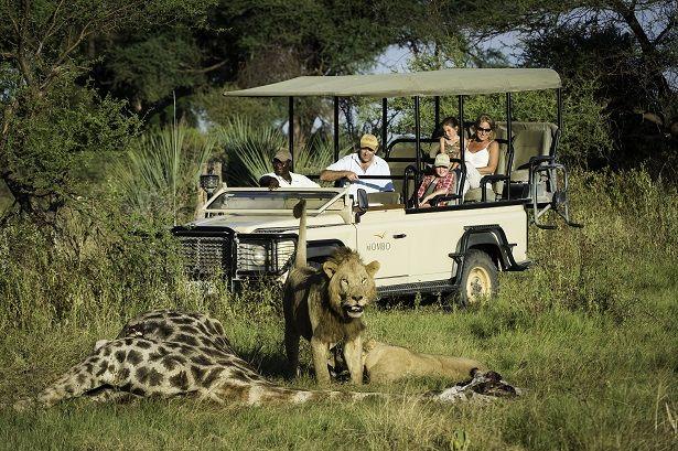 A bucketlist sighting on #safari #Okavango #Botswana