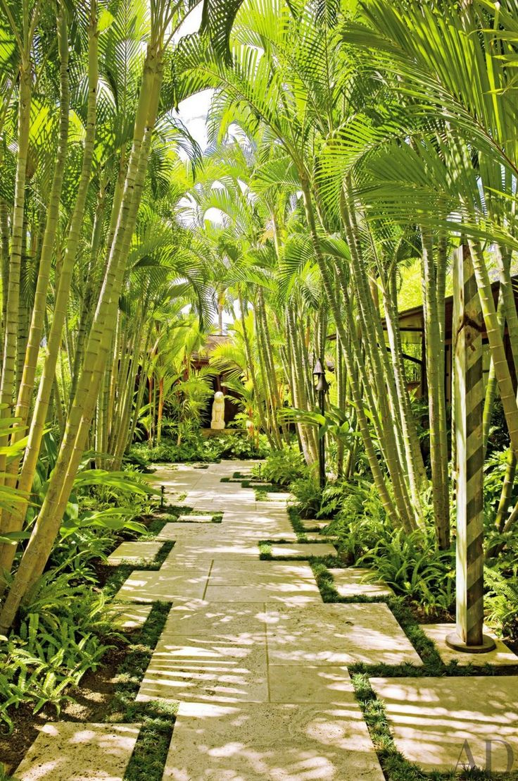 372 best tropical landscaping ideas images on Pinterest
