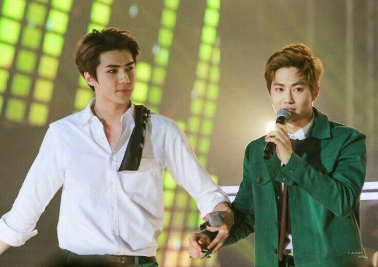 HoHun (Suho & Sehun)         #EXO