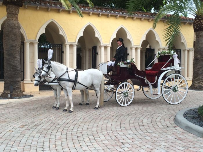 Premier Horses and Carriages Hire for Weddings and Events Covering  all of Florida
