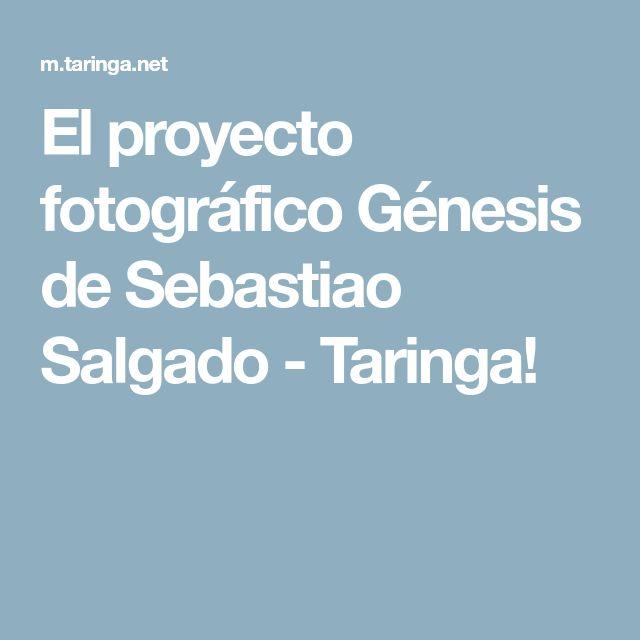 El proyecto fotográfico Génesis de Sebastiao Salgado - Taringa!