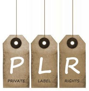 What Are Weight Loss PLR Articles and How Do They Work? #weightlossplr #weightloss #plrarticles