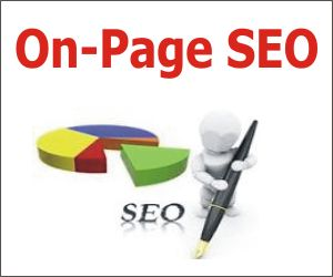 Get Effective On page services from GZMS   call us -  9711074370  http://www.genesiszeal.com