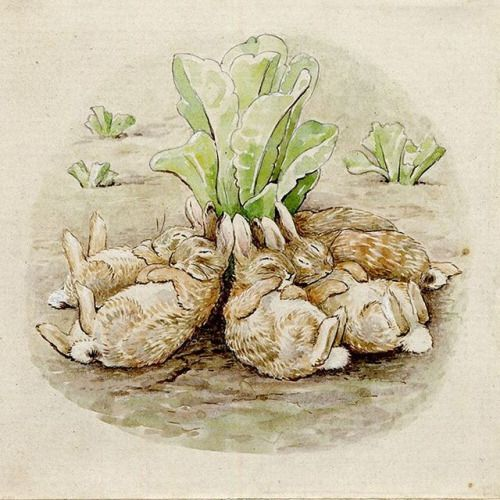 Beatrix Potter's 1909 book 'The Tale of the Flopsy Bunnies'.