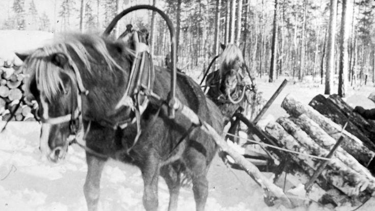 Creating Finnish welfare