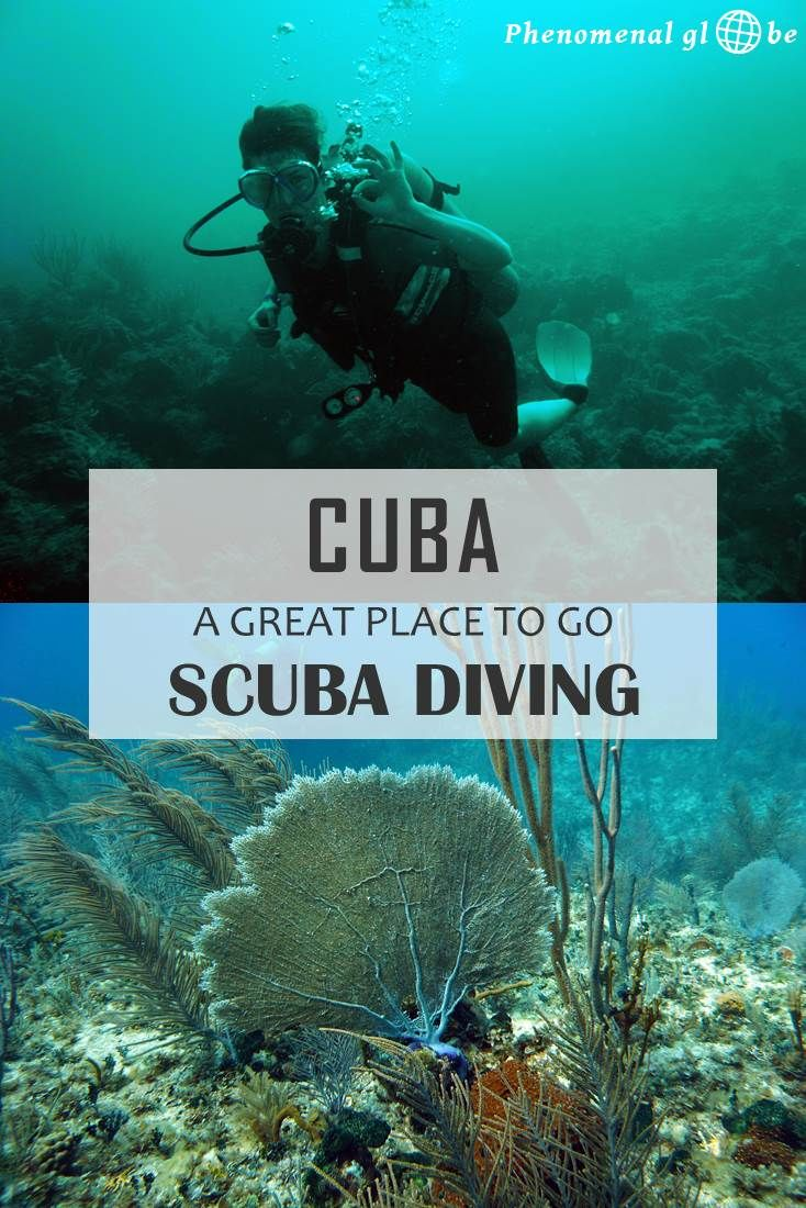 Scuba diving in Cuba is highly recommend! I had read about the many diving…