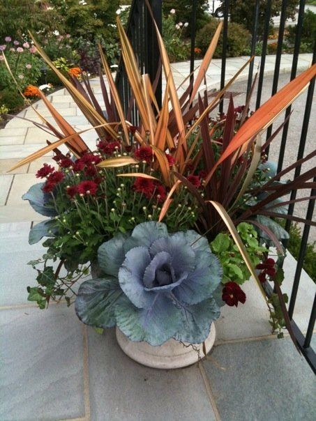 Fall Container Gardening Ideas Photograph Fall Container P