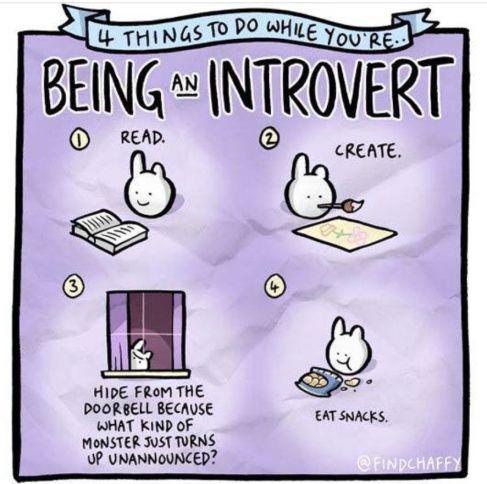 Empath Humor  Introvert Activities