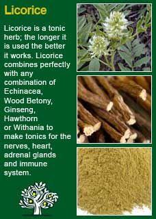 Richard Whelan ~ Medical Herbalist ~ LicoriceRachel Raia