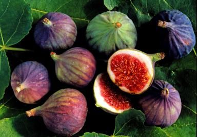 Helpful Tips On Selecting And Storing Figs For Prime Freshness: Fresh Figs