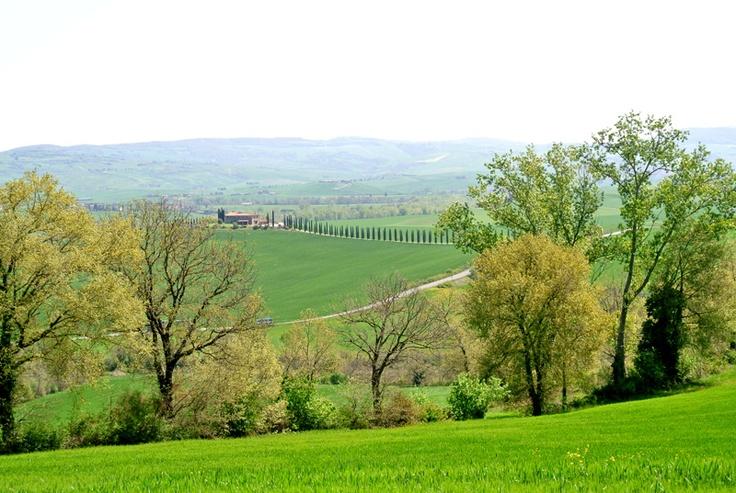#Toscana (Foto di Barbara Palazzi)