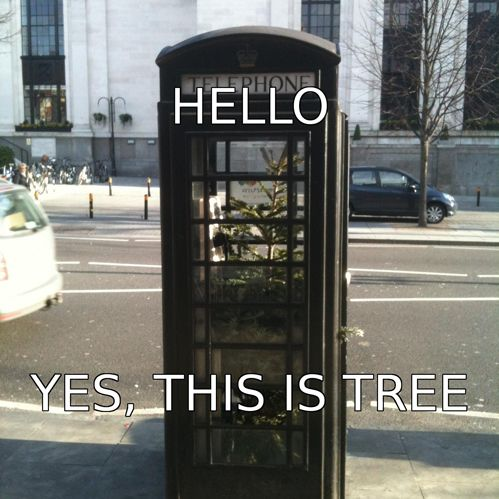 hahahaha: Hello, Giggle, Funny Things, Trees, Funny Stuff, Humor, Funnies, Photo