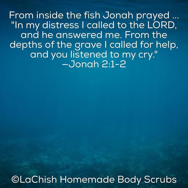 Jonah bible study guide