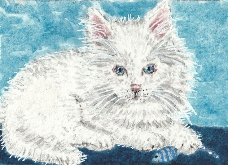 Pearl  white fluffy  Kitten  cat blue eyes cute gift  watercolor   ACEO original #Miniature