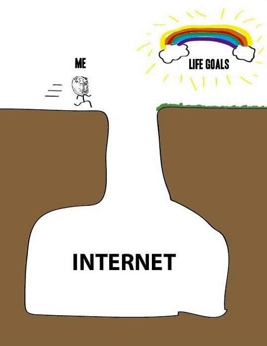 What Stands Between Me And My Goals: Internet.