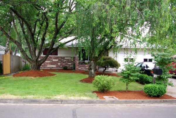 House Landscape Design Ideas