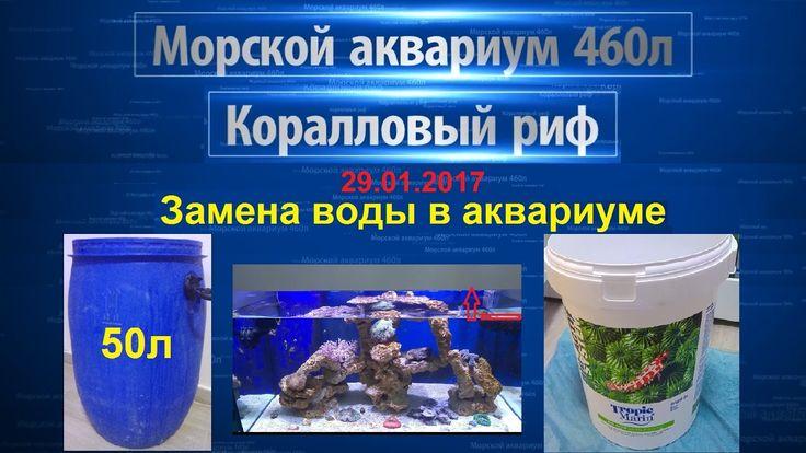 Морской аквариум - коралловый риф | Замена воды в аквариуме | Tropic Mar...