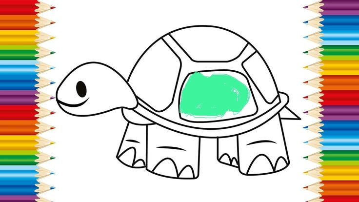 TURTLE Coloring page for KIDS and Learning How to Draw Turtle