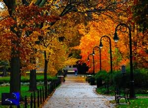 ... Penn State Campus Photo Gallery > penn state: Campus Mall