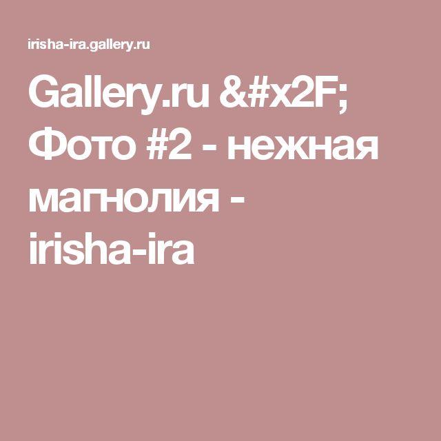 Gallery.ru / Фото #2 - нежная магнолия - irisha-ira