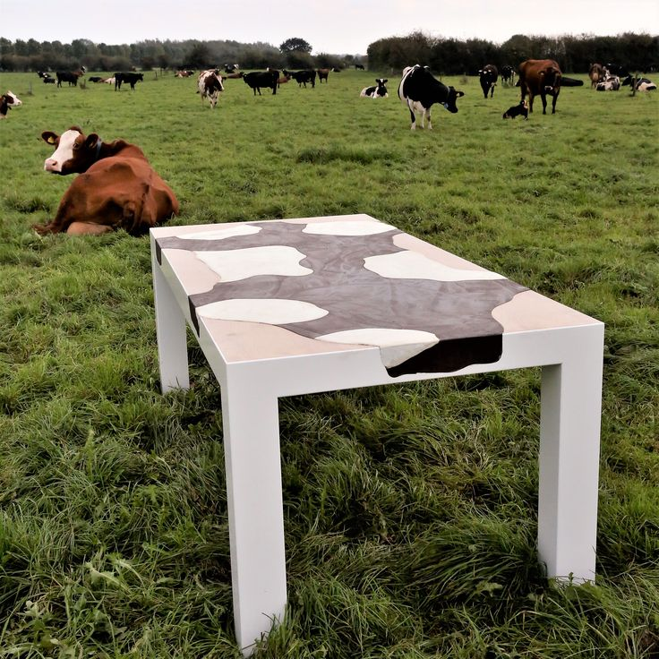 Een dergelijke tafel past natuurlijk nergens beter dan tussen de koeien. Materialen: MDF, HPL blad, hoogglans wit gespoten. Koeienhuid gestuukt met Beal Mortex. Ontwerp: Tony Burki realisatie: Burki Design