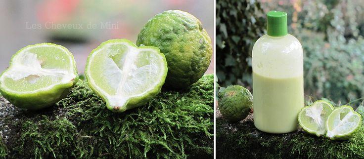 Les cheveux de Mini: shampoing naturel au citron kaffir (combava).