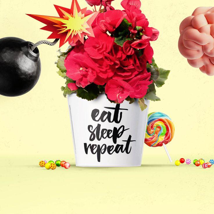 Eat Sleep Repeat 🙌 Dekogeschenk Topf