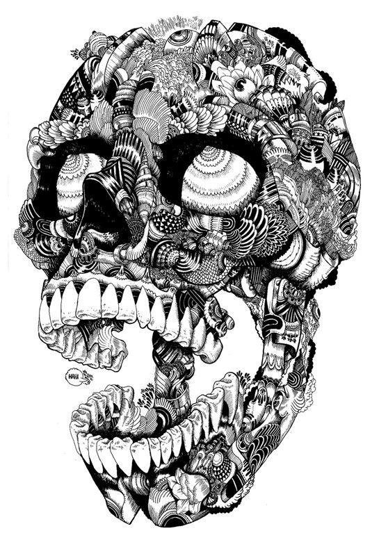 Illustrations by Iain Macaruthur: skull pic 1 copy.jpg