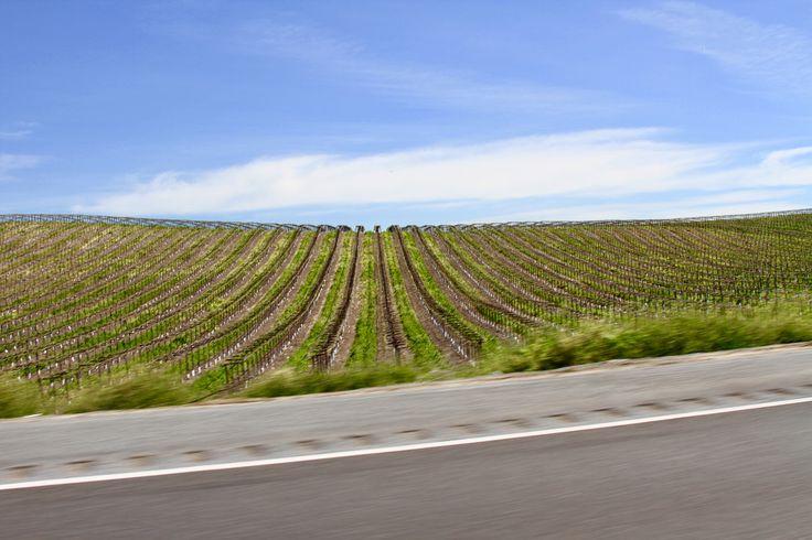 wine country near livermore california