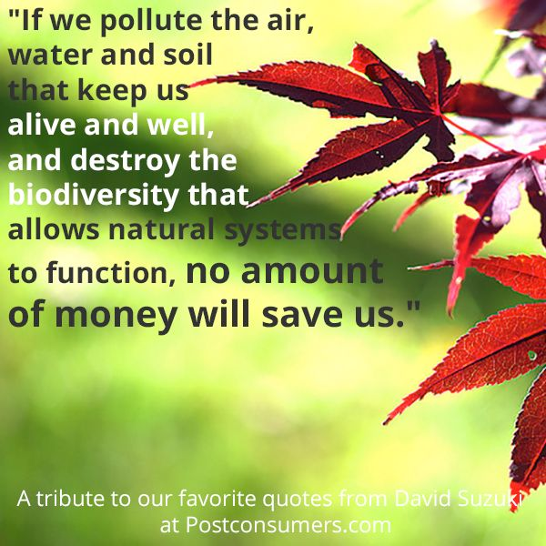 To #savetheplanet - we need to think about the air, the soil and more.