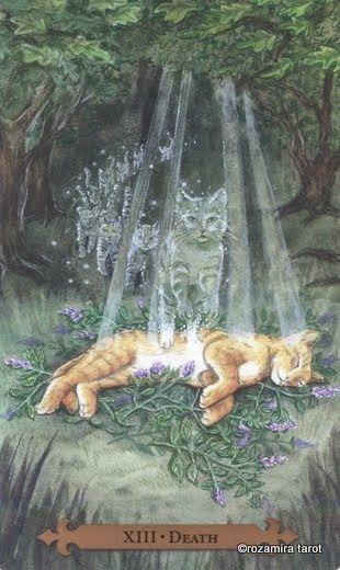 Tarot des chats Mystiques - La Mort (a)