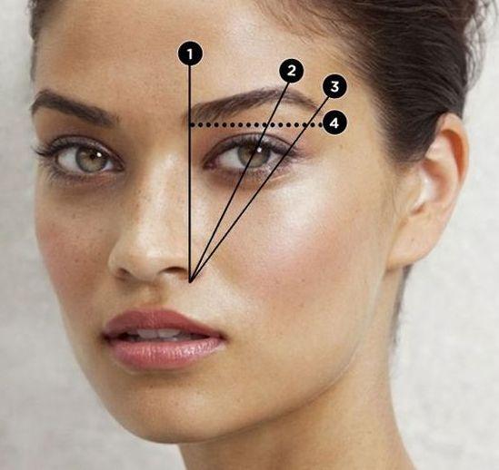 Scopriamo la forma delle sopracciglia in base al viso, le proporzioni ideali e i vari tipi di arcata: ad ali di gabbiano, curve, dritte, folte, sottili, ...