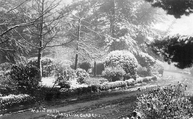 Main Path, Asylum Gardens - Joseph Bishop Family circa 1900s.