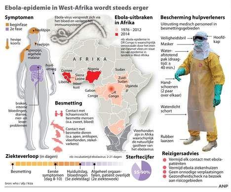 Ebola-epidemie te wijten aan 'één besmetting bij dier' - Wetenschap & Gezondheid - VK