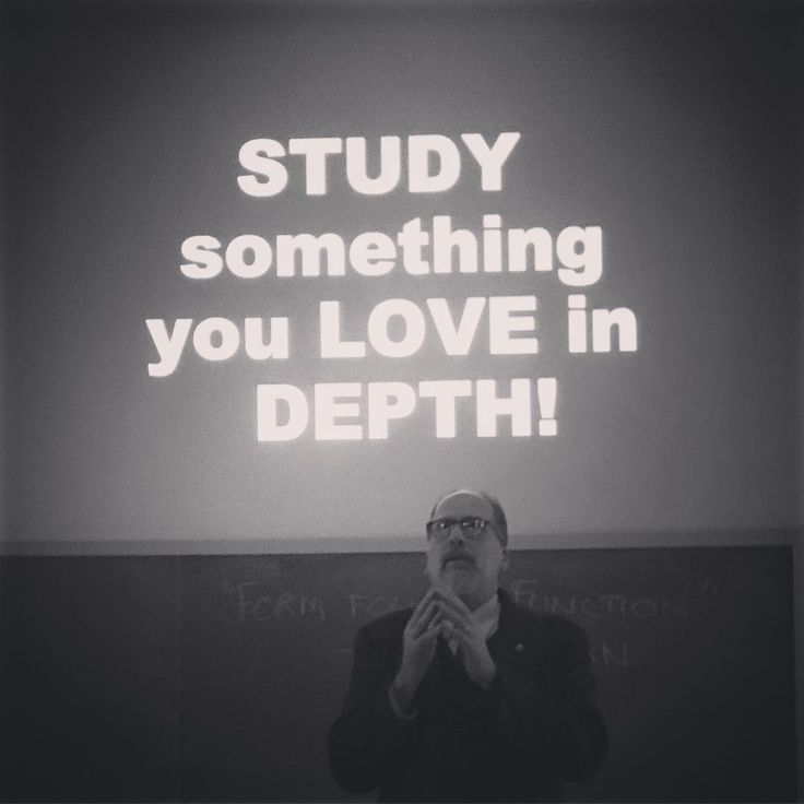 Study something you love in depth