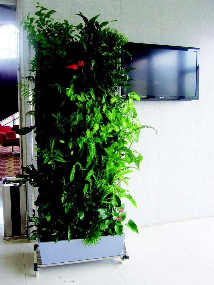 gallery of mur vgtal en kit jardin vertical duintrieur. Black Bedroom Furniture Sets. Home Design Ideas