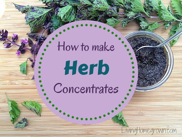 how to make your own concentrates