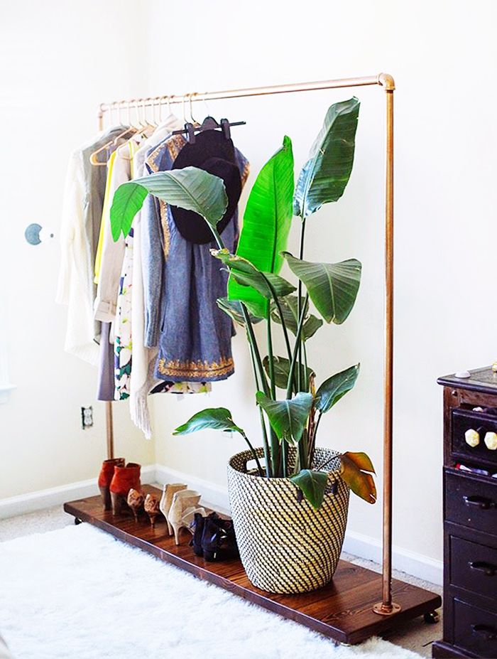 Makeshift closet ideas // Gold clothing rack + plant