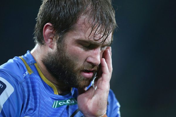 Ben McCalman Photos Photos - Ben McCalman of the Force holds his face as he leaves the field with an injury during the round 17 Super Rugby match between the Western Force and the Brumbies at nib Stadium on June 5, 2015 in Perth, Australia. - Super Rugby Rd 17 - Force v Brumbies