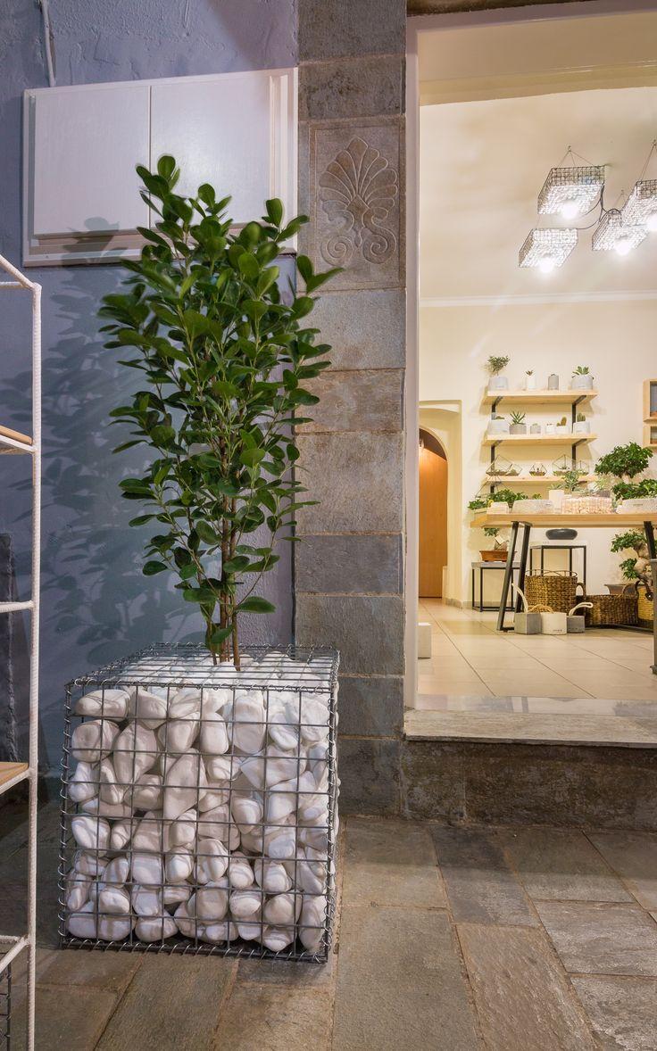 Gabion planter - Gabion creations by greenery #gabion #gabioncreations #pots #greenery #airplants #succulents #cactus #plants #chania #greece