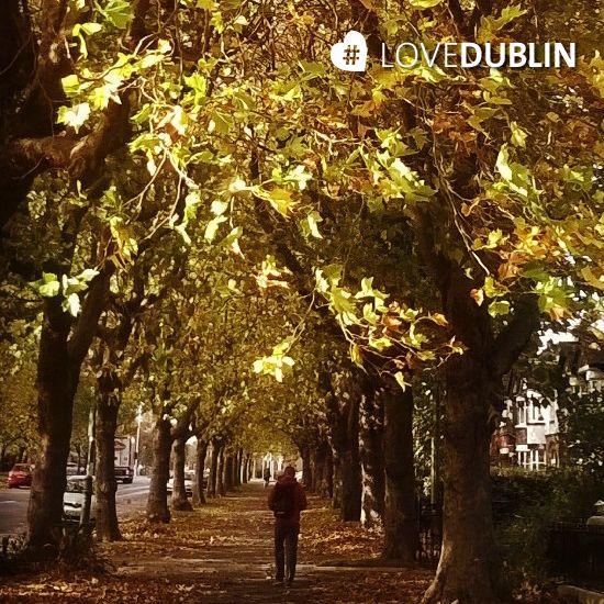 Griffith Avenue captured by @antoinetteereilly #LoveDublin