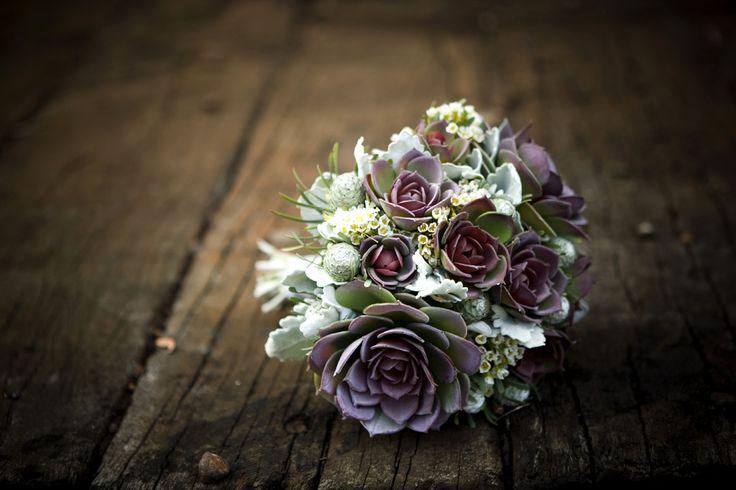 Stunning Succulents: I love how the cool blue/green of a succulent compliments almost any other color in a bouquet.