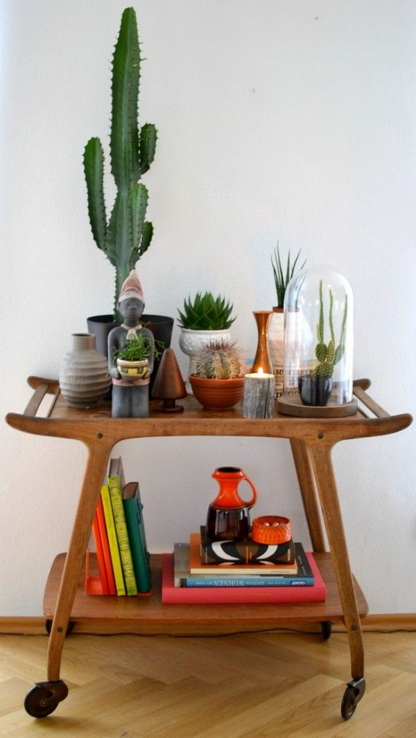 cactus drink cart with terranium
