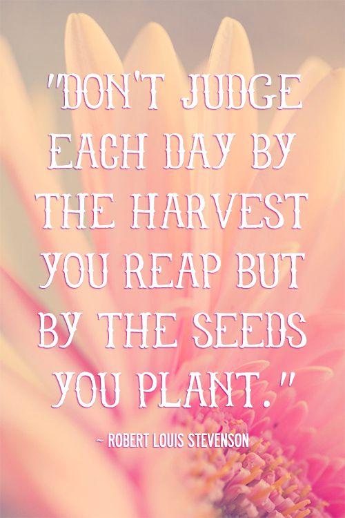 new week, new seeds, keep planting friends! :-)