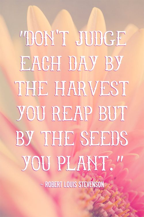 inspirational quotes about planting seeds quotesgram