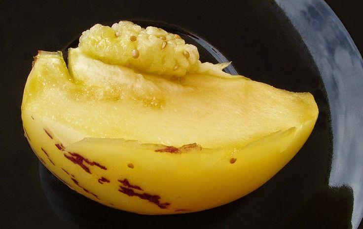 pepino dulce, pera melón, pera-melón, pepino, cultivo frutas exóticas en casa, cultivo frutas exóticas en España, huerto urbano, macetohuerto, cultivo en macetas