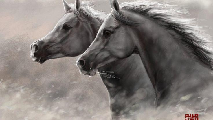 Baş Sanat Güzellik Atları Hayvan Resimleri Çift Çalışan Resimleri Göster